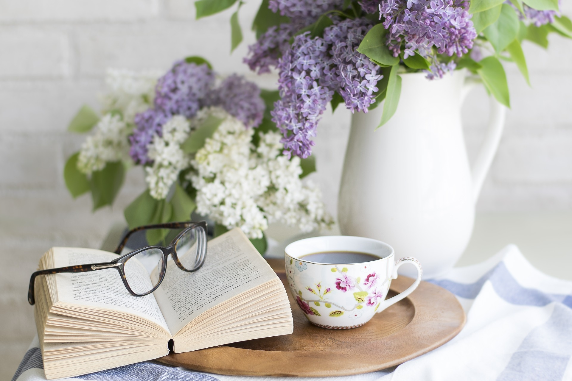 The LoveReading Book Club of the Month